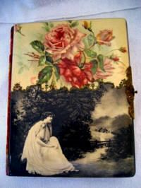 Antique Photo Album 1800 | Antique Victorian celluloid photo album lady in the country large ...