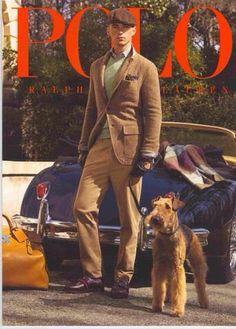 an Airedale Terrier! Airedale Terrier, Irish Terrier, Bedlington Whippet, Terriers, Ralph Lauren Style, Polo Ralph Lauren, Wire Fox Terrier, Gentleman Style, Preppy Style