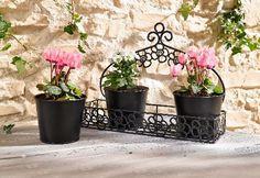 Záhrada, Terasa, Balkón | Polička s 3 kvetináčmi | Lavanda - dekorácie a bytové doplnky s patinou