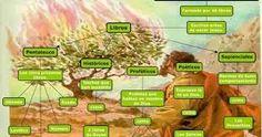 Resultado de imagem para infografias biblia