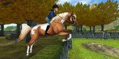 Gyönyörű lovak a Goldspur birtokon!