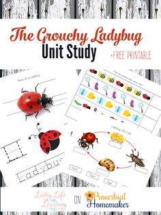 The Grouchy Ladybug Unit Study with Printables - part of the Children's Literature Unit Study series on ProverbialHomemaker.com