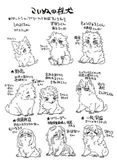 Moonlight, Manga, Animals, Art, Animales, Animaux, Manga Comics, Animal Memes, Animal
