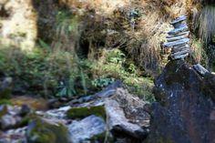 Poon Hill trek