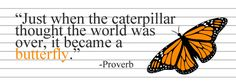 """Just when the caterpillar thought the world was over, it became a butterfly.""  --Proverb"