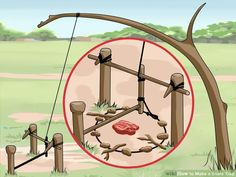 how to make a basic snare trap - Tap The Link Now To Find Gadgets for Survival and Outdoor Camping