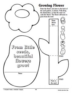 Plants need coloring page free plant worksheet free seed having fun with soil seeds and sun scholastic ccuart Gallery