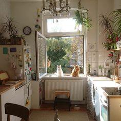 Cozy kitchen- white, light, open shelving, plants
