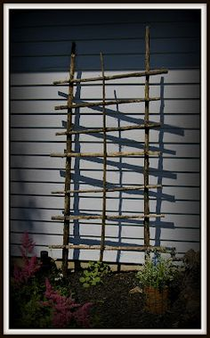 From My Garden to Yours: Making a Trellis Out Of Sunflower Stalks