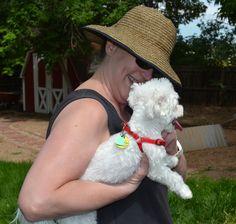 Photos - Lafayette Littler Dog Meetup (Lafayette, CO) - Meetup