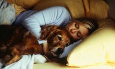 Should your pet sleep in your bed with you?