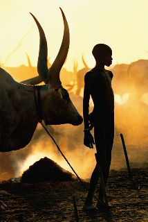 The photographers Carol Beckwith and Angela Fisher documented the daily lives of the Dinka people, a fascinating tribe in southern Sudan. The Dinka people are distinctive for their close relationship with cattle, with which they live in perfect harmony. African Culture, African Art, Photo Exhibit, Foto Art, Photo Series, People Of The World, World Cultures, Belle Photo, Cattle
