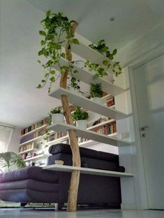 DIY Tree Shelves