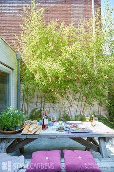 City garden, green outdoor rooms in line - StyleGardens. DESIGNED BY: Jacqueline . Urban Garden Design, Garden Yard Ideas, Garden Projects, Small Gardens, Outdoor Gardens, Dream Garden, Home And Garden, Fargesia, Interior Garden