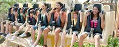 Image Search Results for wild amusement park ride
