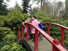 The Park Less Traveled: 7 Seattle Parks to Discover