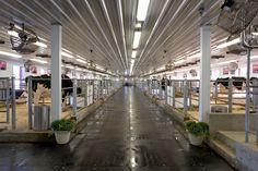 Post-Frame Dairy Barn for Show Cattle in Chebanse, Illinois | FBi Buildings