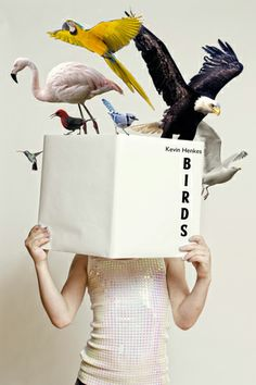 "Birds by Kevin Henkes. 2014 Summer Reading Poster. Inspired by the ""Power of Books"" series by Mladen Penev."