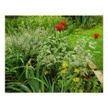 Flower Garden Value Poster Paper (Matte)