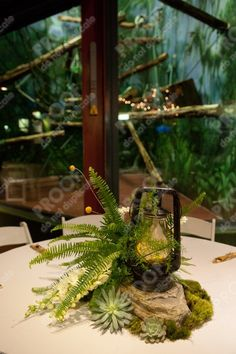 """""""Safari"""" centerpiece with antique coleman lanterns, for an autumn wedding in the primate house at the Philadelphia Zoo... so much fun!"""