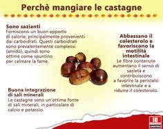 Castagne perchè mangiarle? #castagne