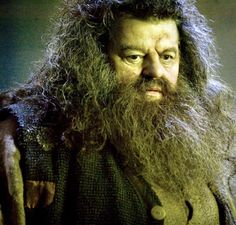 Anyone who read Harry Potter knows that Rubeus Hagrid is a half-giant wizard whose magical abilities are oftentimes flawed, but his courageous spirit is always Harry Potter Theories, Harry Potter New, Harry Potter Friends, Harry Potter Facts, Harry Potter Characters, Popsugar, Robbie Coltrane, Marilyn Monroe Portrait, Rubeus Hagrid