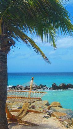 Dream Beach Location In Aruba Hammock On The Under A Palm Tree Best