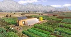 The Farm From A Box system is designed to feed 150 people per year, and includes drip irrigation, all of the tools, and its own renewable energy setup.