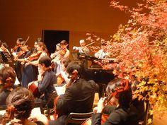 第4回音楽発表会 バイオリン・ヴィオラ・チェロの全体合奏