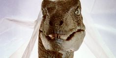 """Which """"Jurassic Park"""" Character Are You? I got the Dilophosaurus, but I still want the T-Rex!"""