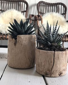 Gestern # @ one_world_interiors # myself # taken # # living # # interior # # Scandinavian living # # green - Kaktus Indoor Garden, Indoor Plants, Home And Garden, Diy Planters, Planter Pots, Wooden Planters, Succulent Planters, Decoration Plante, Succulents In Containers