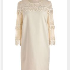 Darling Charleston Mini Shift Dress This is just a great color! Gorgeous lace sleeves with sequins . Made of poly, viscose and spandex with a polyester lining, this is a nice little spring staple! Darling Dresses Mini