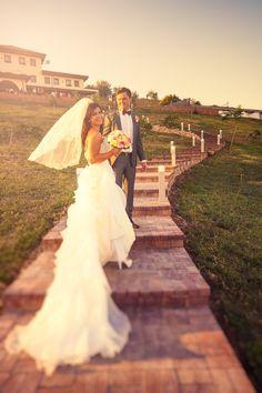 Mr and Mrs Nițu - wedding - Religious Ceremony, More Photos, Wedding Ceremony, Wedding Photography, Wedding Dresses, Bride Dresses, Bridal Gowns, Alon Livne Wedding Dresses, Wedding Gowns