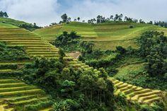 Wanderreise durch Vietnam