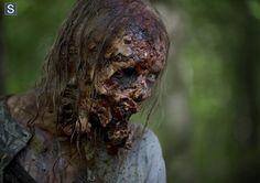 the-walking-dead-season-5-walker