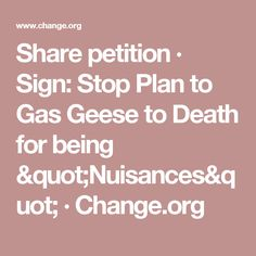 """Share petition · Sign: Stop Plan to Gas Geese to Death for being """"Nuisances"""" · Change.org"""