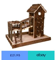 Choose from our range of toys for your hamster. We offer the best hamster toys, including essential exercise wheels. For a happier and healthier hamster. Habitat Du Hamster, Hamster Diy Cage, Diy Hamster Toys, Gerbil Toys, Hamster Care, Syrian Hamster, Guinea Pig Toys, Pet Toys