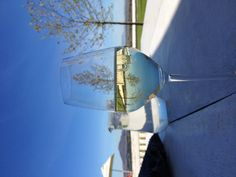 Wine Tasting at Spice Route, Paarl White Wine, Red Wine, Winter Day, Wine Tasting, South Africa, Alcoholic Drinks, Spices, Glass, Amazing
