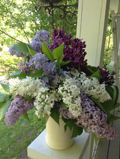 Lilacs my favorites