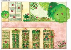 Urban Shade Garden Plan Flowers, vegetables and fruit for a garden that doesn't get full sun.