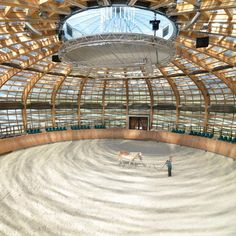 Stork Nest Farm: horse riding arena in the Czech Republic
