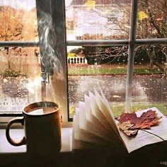 Love it , rainy day , coffee & a good book !!