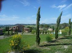 Park around the villa Park Around, Tuscany, Villa, Vacation, Luxury, Plants, Vacations, Tuscany Italy, Holidays Music