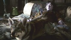 http://images5.fanpop.com/image/photos/30400000/Summer-Bran-direwolf-game-of-thrones-direwolves-30439889-624-352.png (624×352)