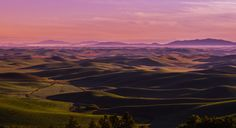 Palouse sunrise looking to Idaho Panorama by Mark Bowen The US's version of Tuscany - farmlands, wind turbines and hills as far as i can see - what's not for me to like. Idaho, Landscape Photography, Nature Photography, Travel Photography, Photos Of The Week, Virtual World, Beautiful Landscapes, Wind Turbine, Things That Bounce