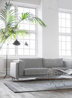 industrial style loft with huge windows and high ceilings | grey velvet sofa and art deco details | Trendenser styled this room with an IKEA Nockeby sofa and Bemz Zinc velvet cover