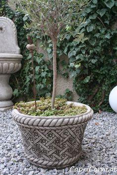 Blumenübertopf Antiksteinguss (winterfest) Plants, Luxury, Stone Sculpture, Winter Festival, Sculptures, Flowers, Plant, Planets
