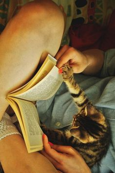 Once upon a time... #cat #kitty #book #cute