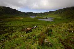 SIARAM :: Zonas Húmidas :: Caldeirão do Corvo, Corvo Island, Azores, Portugal