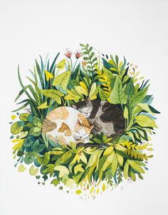 Sleeping cats II on Behance